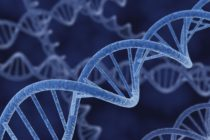 Գիտնականները երկու գեն են հայտնաբերել, որոնք մարդկանց հետվնասվածքային սթրեսային խանգարումների (ՀՎՍԽ) ռիսկային գոտում են դնում