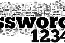 2014-ին ամենատարածված գաղտնաբառը`123456