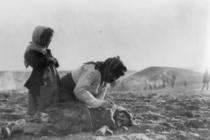 Ճապոնական ներկալումն նմա՞ն է հայերի իսլամական ցեղասպանությանը