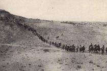 Վատիկանի արխիվները լույս սփռեցին Հայոց Ցեղասպանության ողբերգության վրա