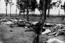 Դաշնակիցները Գալիպոլիում. 1915 թվականի հաղթանակը և 2015 թվականի ստորացումը