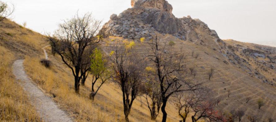 Հետազոտողները պնդում են՝ Նոյի տապանը գտել են Իրանում, լեռան գագաթին