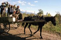 Կարճ ուղեցույց Հարավային Կովկասի երկրները հասկանալու համար․ Հարավային Կովկասը՝ Թոմաս դե Վաալի աչքերով