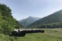 Պանկիսի բնակիչները ընդհանրություն են գտնում մյուս վրացիների հետ