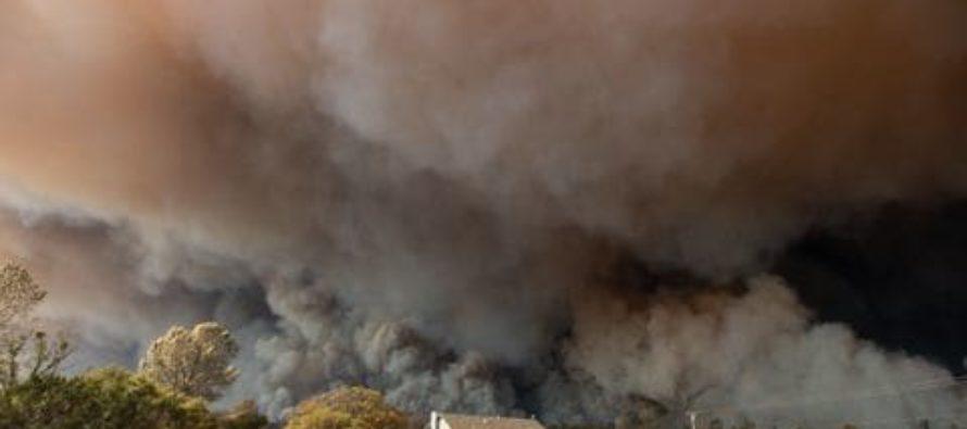Աշխարհը այրվում է. Թրամփը խաղում է կրակի հետ